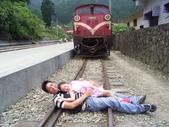 95年‧綜合生活照:阿里山小火車