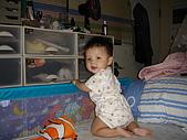 兒子的成長紀錄:DSC00441