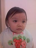 我的寶貝們:15-02-08_2211.jpg