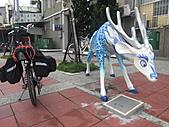 2010-1106--台南175縣道咖啡公路單騎行。:CIMG1613.JPG