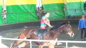 2011-0917--社區2011年自強活動第一天(清境農場):P9170489--清境農場馬術表演.JPG