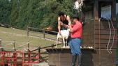 2011-0917--社區2011年自強活動第一天(清境農場):P9170461--清境農場.JPG