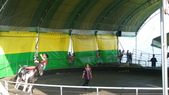 2011-0917--社區2011年自強活動第一天(清境農場):P9170497--清境農場馬術表演.JPG