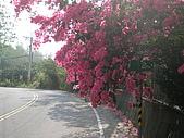 2010-0515--屏東「單車國道」行:P5150364.JPG