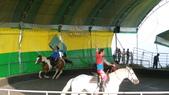 2011-0917--社區2011年自強活動第一天(清境農場):P9170506--清境農場馬術表演.JPG