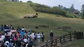 2011-0917--社區2011年自強活動第一天(清境農場):P9170440--清境農場.JPG