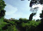 2015-0726--高雄市彌陀區漯底山自然公園:DSCF6337.JPG