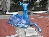 2010-1106--台南175縣道咖啡公路單騎行。:CIMG1611.JPG