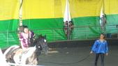 2011-0917--社區2011年自強活動第一天(清境農場):P9170485--清境農場馬術表演.JPG