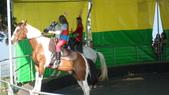 2011-0917--社區2011年自強活動第一天(清境農場):P9170486--清境農場馬術表演.JPG