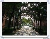 台北藝術大學‧寶萊納餐廳:DSC04133_nEO_IMG.jpg