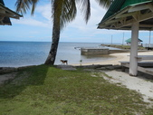 2012帛琉珊瑚海5日Day2-3 紅樹林獨木舟&午餐:DSCN1006.JPG
