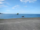 2012帛琉珊瑚海5日Day2-3 紅樹林獨木舟&午餐:DSCN0995.JPG