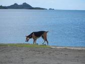 2012帛琉珊瑚海5日Day2-3 紅樹林獨木舟&午餐:DSCN0996.JPG