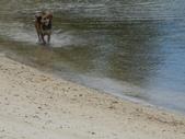 2012帛琉珊瑚海5日Day2-3 紅樹林獨木舟&午餐:DSCN1003.JPG