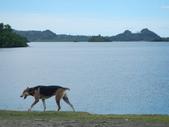 2012帛琉珊瑚海5日Day2-3 紅樹林獨木舟&午餐:DSCN0997.JPG