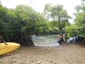 2012帛琉珊瑚海5日Day2-3 紅樹林獨木舟&午餐:DSCN1011.JPG