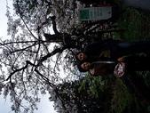 遊山玩水-阿里山篇:P1010157.JPG