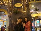 馬來西亞之旅:DSC04752