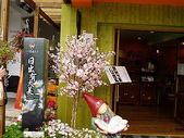 遊山玩水-阿里山篇:P1010161.JPG