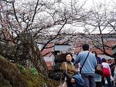 遊山玩水-阿里山篇:P1010143.JPG