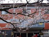 遊山玩水-阿里山篇:P1010144.JPG