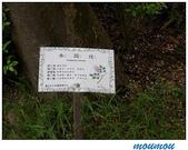 flower:水黃皮05.jpg
