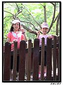 虎頭山漫步:IMG_4122.jpg