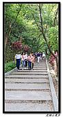 虎頭山漫步:IMG_4123.jpg