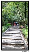 虎頭山漫步:IMG_4125.jpg