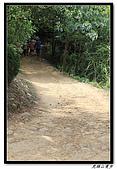虎頭山漫步:IMG_4139.jpg