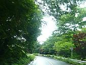 2010.7.12下山出去玩:013頭文字D的山路.JPG