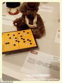 韓國濟州泰迪熊博物館特展:職業棋手_Fotor.jpg
