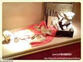 韓國濟州泰迪熊博物館特展:1980297_709048945783282_1517565122_o_Fotor.jpg
