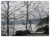 南投:IMG_0048_Fotor.jpg