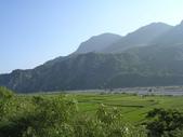 台東卑南初鹿:小黃山旁6