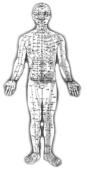 隨性天然 自在之體:正面穴位圖