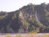台東卑南初鹿:小黃山旁22