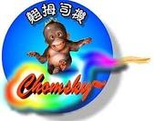 祝福眾生:Chomsky.jpg