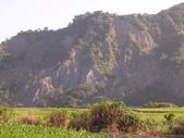 台東卑南初鹿:小黃山旁29