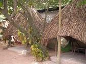 越南胡志民:越南到處可見的菠蘿蜜和涼棚