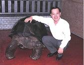 祝福眾生:靈龜