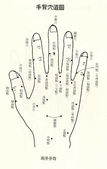隨性天然 自在之體:手穴圖3