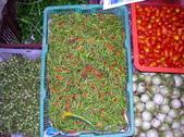新加坡國際交流:辣椒和小茄子