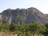 台東卑南初鹿:小黃山旁36