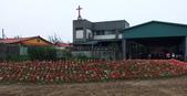 2012西湖柚花季:DSCF9399.JPG