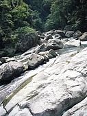 08向天湖、神仙谷、護魚步道、賽夏+:P1090977.JPG