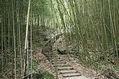 08向天湖、神仙谷、護魚步道、賽夏+:IMG_0560.JPG