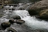 08向天湖、神仙谷、護魚步道、賽夏+:IMG_0616.JPG