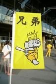 081028 職棒總冠軍賽第三戰in洲際棒球場:象隊的旗子,很Q